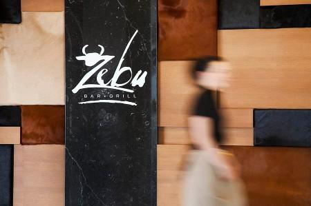 zebu-bs1210_ryd1_rj